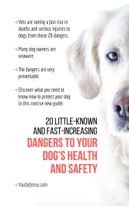 dog safety cover